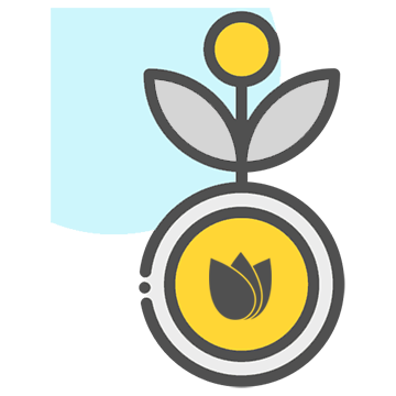 What means seed in cryptocurrency